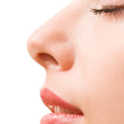 Nose Surgery In Delhi Rhinoplasty Surgery Nose Surgery Cost In Delhi